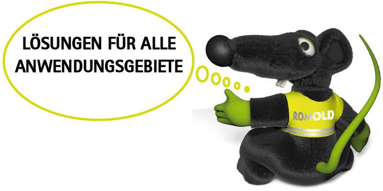 Ratte_Loesungen